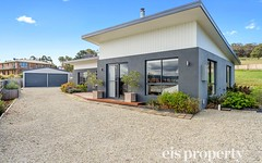 218 Blessington Street, South Arm TAS