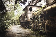 The forgotten train (Missing Pictures) Tags: industrial city urban industry overgrown ivy emptiness darkness dark traveling travel oldtrains nostalgic nostalgia mood forgotten shabby dusty hungary budapest decay empty abandoned atmospheric atmosphere explore train old plants vegetation rustique