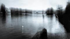 Hidden path.. (Zara.B) Tags: riverbank river bridge thames intentionalcameramovement icm iphone impression slowshutterapp selenium tone high water abstract