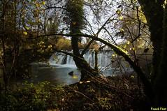 contre jour sur le Barrage du Dérochoir - Mesnay - Jura (francky25) Tags: contre jour sur le barrage du dérochoir mesnay jura ambiance lumière matinale automne franchecomté