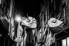 Quand le soir tombe sur des animaux marins. (LACPIXEL) Tags: soir evening tarde animal marin marino fromthesea sea mar mer dieppe foireduhareng arenque herring noiretblanc blancoynegro blackandwhite nikon nikonfr street rue calle flickr lacpixel cieremueménage