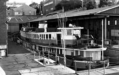 BW 004 1979 06 029 (wvjqkjmy43) Tags: ferry balmain kanangra