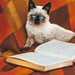 An open book and a Siamese cat on a red plaid outside