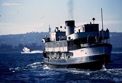 T 041 1980 08 01 023 (wvjqkjmy43) Tags: ferry manly bellubera baragoola