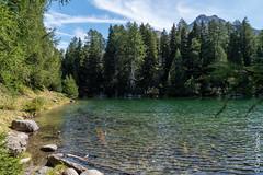 Lägh da Bitabergh, Maloja (Bergell, Graubünden) (14/09/2019 -02) (Cary Greisch) Tags: bergell che carygreisch kantongraubünden läghdabitabergh maloja see switzerland valbregaglia lac