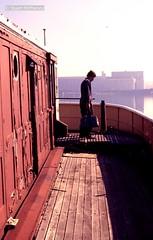 T 016 1979 06 029 (wvjqkjmy43) Tags: ferry bellubera blackwattlebay