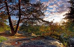 Gorges de Franchars (hbensliman.free.fr) Tags: travel forest france nature landscape autumn foliage trees season pentax pentaxart pentaxk1 path fontainebleau outside outdoor