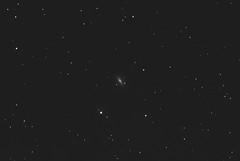M102, The Spindle Galaxy (doug0013) Tags: astrometrydotnet:id=nova3757794 astrometrydotnet:status=solved