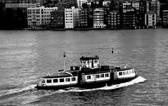 BW 081 1980 04 002 (wvjqkjmy43) Tags: ferry kooleen sydneyharbour