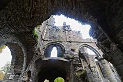 DAL (DALfotografie) Tags: belgien kloster ruine klosterruine architektur