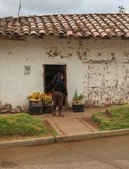 Cusco to Ollataytambo (4) (Polis Poliviou) Tags: peru pisac quechua urubamba valley cusco cuzco peruvian peruvians inca machupicchu andesmountains latinamerica spanishempire southamerica incaempire travelphotos ©polispoliviou2019 polispoliviou polis poliviou pisacsuvenirs ollantaytamboruins urbanphotography historiccity incacity pisacmarket ancient travel vacations holiday museums catholic cuscoperu ruins traveldestination machupicchupueblo christianity history unesco classical citadel heritage architecture city sacredvalley masterpiece antithesis colonial andes columbian franciscopizarro cathedral historical spanishconquistadors urubambariver incancitadel rivervalley hill temple color colour colourful colorful
