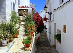Romantic Andalusia (majka44) Tags: spanielsko spain travel andalusia flower colors light memory building white red sky street view romance lifestyle