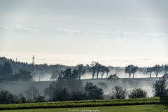 Misty Landscape near Gaiberg - November 2019 I (boettcher.photography) Tags: rheinneckarkreis badenwürttemberg germany deutschland sashahasha boettcherphotos boettcherphotography herbst autumn fall november 2019 baum tree bäume trees landscape landschaft natur nature gaiberg misty foggy nebelig nebel fog mist