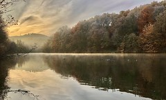autumnal morning mist at the reservoir (Stefan Markus) Tags: morning morgen reflecting spiegelung water wasser trees bäume autumn herbst reservoir stausee iphone germany deutschland nordrheinwestfalen wuppertal beyenburgerstausee