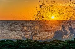 Back Beach Wave (David Hamments) Tags: sunset wave wa splash bunbury backbeach flickrunitedaward
