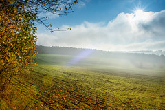 A sunny autumn morning 🍁☀️🍂 (Martin Bärtges) Tags: bewölkt woljen wolkig cloudy clouds hills brown tal valley täler berge hügel grün green braun orange gelb yellow foliage laub baum bäume wald woods forest trees farbenfroh colorful deutschland germany himmel blau blue sky naturfotografie naturephotography naturelovers naturliebhaber natur nature herbstfarben herbst autumncolors autumn spiegelreflexkamera nikonfotografie nikonphotography d4 nikon sonnenstrahlen sonne sonnenschein raysoflight sunshine sun outside outdoor drausen landschaftsfotografie landschaft landscapephotography landscapelovers landscape