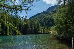 Lägh da Bitabergh, Maloja (Bergell, Graubünden) (14/09/2019 -01) (Cary Greisch) Tags: bergell che carygreisch kantongraubünden läghdabitabergh maloja see switzerland valbregaglia lac