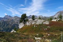 Auf der Motta Salacina (Maloja); hinten links Piz Duan und Piz Lizun (Bergell, Graubünden) (14/09/2019 -08) (Cary Greisch) Tags: bergell che carygreisch kantongraubünden maloja mottasalacina pizduan pizlizun switzerland valbregaglia