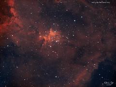 The Heart of The Heart Nebula (HOO Narrowband) (Ralph Smyth) Tags: nebula melotte15 melotte ic1805 cassiopeia skywatcher narrowband ngc sharpless zwo astrometrydotnet:id=nova3757782 astrometrydotnet:status=solved