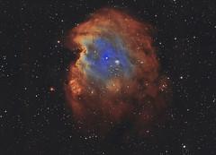 NGC 2174 LSHO 18th.Nov.2019. (Ian J Crichton) Tags: astrometrydotnet:id=nova3757785 astrometrydotnet:status=solved