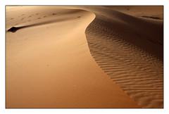 Le serpent des dunes -  The snake of the dunes (diaph76) Tags: extérieur sable sand paysage landscape maroc morocco dunes desert