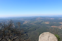 View from the top - Gods Window (Rckr88) Tags: gods window godswindow view from top viewfromthetop views mountain mountains landscape landscapes mpumalanga southafrica south africa nature naturalworld outdoors travel travelling trees tree greenery green grass