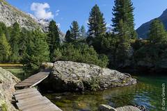 Am Lägh da Cavloc (Maloja, Val Bregaglia, Graubünden) (14/09/2019 -19) (Cary Greisch) Tags: bergell che carygreisch kantongraubünden läghdacavloc maloja see switzerland valbregaglia lac