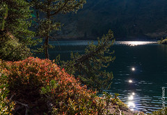 Am Lägh da Cavloc (Maloja, Val Bregaglia, Graubünden) (14/09/2019 -20) (Cary Greisch) Tags: bergell che carygreisch kantongraubünden läghdacavloc maloja see switzerland valbregaglia lac