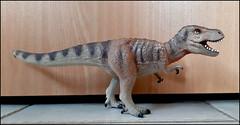 Tyrannosaurus 20191121_124311 (Zachi Evenor) Tags: zachievenor dinosaurs dinosaur dinosuaria dinosaurmodel model figure toy figures 20191121 דינוזאור דינוזאורים דינוזאוריה דגם דגמים בובותדינוזאורים בובה צעצוע טירנוזאורוס טירנוזאורוסרקס בולילנד tyrannisaurus tyrannosaurusrex