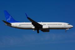 N917XA (Swift Air) (Steelhead 2010) Tags: swiftair boeing b737800 b737 yyz nreg n917xa