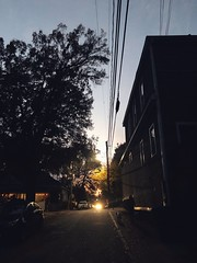 322/365 (moke076) Tags: 2019 365 project 365project project365 oneaday photoaday mobile cell cellphone iphone cabbagetown atlanta ga street road night evening buildings walking dark moody people random candid