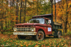 Forest Ford (* Gemini-6 * (on&off)) Tags: ford truck dumptruck vehicle transportation autumn trees orange rust patina decay forest hss