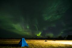 Aurora (DarioPerry) Tags: aurora borealis iceland night tent northern lights northernlights
