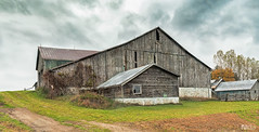 Weathered barn on a rainy day