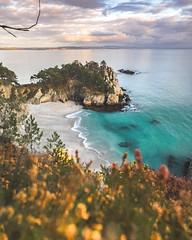 L'Idyllique Île (ThibaultPoriel) Tags: bretagne presquîledecrozon morgat sunset beach flore nature