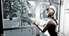 Last Christmas (Biatch Fenwitch) Tags: christmas snow christmastree memories romance blonde tattoo