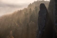 fantasy games (Rafael Zenon Wagner) Tags: felsen rock wald forest nebel fog herbst autumn germany deutschland sachsen sächsischeschweiz saxonswitzerland saxony morning morgen licht light strahlen rays sonne sun sunrise sonnenaufgang