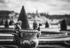 Patience, patience !!!! (Un instant.) Tags: patience angel château versailles look histoire bnw noiretblanc bokeh canon manfrotto