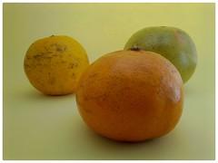 Cítricos; mandarina, toronja y naranja. (Juan Xic Eseyosoyese) Tags: citricos mandarina naranja toronja frutas mini bodegón tres fruits hisense foto minimalismo trio color gajos favoritas fruitpic