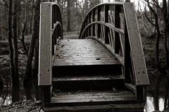 The new bridge (Geir Bakken) Tags: bridge beltica fomapan fomapan200 fomadonp blackandwhite film filmisnotdead filmphotography filmcamera 135film 135 vintagecamera vintage analog analogphotography bw