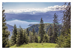 Blue Lagoon. (Anscheinend) Tags: bayern bavaria deutschland germany blue alpen alps alpes alpi mountains berge see lake lakeside lagoon lago lac herzogstand walchensee