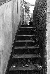 Back steps (phil da greek) Tags: uk northyorkshire scarborough