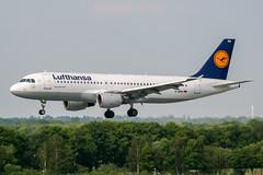 D-AIPU (PlanePixNase) Tags: aircraft airport planespotting haj eddv hannover langenhagen lufthansa airbus 320 a320