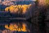 Reflection in Loch Faskally, Pitlochry