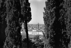 Through the trees, Verona cityscape from the archive (elkarrde) Tags: fomadon olympuslens35mm128 35mm ilfordhp5400 ilford hp5 400 ilfordhp5 blackwhite film film:process=blackwhite fomadonr09 125 italy travel olympusmjuii μmjuii olympusμmjuii olympus mjuii compactcamera pointnshoot filmphotography filmisalive 2014 may spring may2014 spring2014 verona trees city cityscape architecture camera:format=135 camera:brand=olympus plustekopticfilm8100 oneshotr09