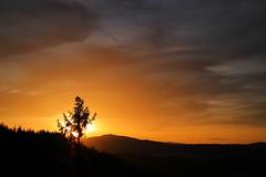 Light behind the tree (Xtraphoto) Tags: bayern bavaria bayerischerwald bavarianforest hill berg sun sonne sonnenaufgang sunrise tree baum
