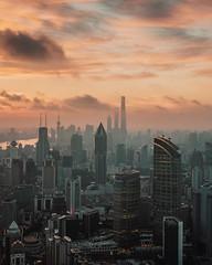 Sunrise, Shanghai Style (bradycloud2005) Tags: newyork newyorkcity jinmaotower shanghai building skyscraper orientalpearltower shanghaiworldfinancialcentre city hudsonyards 30hudsonyards chryslerbuilding chinazun centralparktower 111west57thstreet 111w57thstreet citictower changsha chowtaifookfinancecentre changshaifs theexchange106 tunrazakexchange kualalumpur archictecture skyscrapers guangzhou guangzhouctffinancecentre geotagged tianjin tianjinctffinancecentre cantontower burjkhalifa dubai skylines empirestatebuilding oneworldtradecenter onevanderbilt chicago willistower wuhangreenlandcenter wuhan taipei101 shenzhen pinganfinancecenter petronastowers