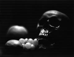 Dangerous fruits (Rosenthal Photography) Tags: ilfordfp4 asa125 epsonv800 ilfordlc2912916°c12min 20191101 kodakaeroektar725grosformatgraflexspeedgraphic4x5schwarzweiss4x5analogilfordrapidfixer201911014x5epsonv800graflexspeedgraphic4x5grosformatilfordfp4ilfordlc29 129 16°c 12minilfordrapidfixerkodakaeroektar725 analog schwarzweiss kodakaeroektar725 grosformat graflexspeedgraphic4x5 4x5 ilfordrapidfixer indoor stilllife fruits skull dangersfruits apples graflex seep graphic kodak aero ektar 178mm f25 ilford lc29 rapid fixer epson v800 fp4 fp4plus