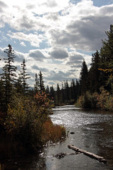 Sunny Clouds over Policeman's Creek (JB by the Sea) Tags: canmore alberta canada september2019 rockies rockymountains canadianrockies policemanscreek policemancreek