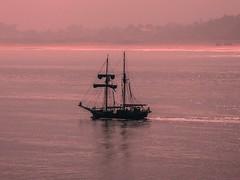 Sea tale (lauracastillo5) Tags: sea seascape ship ocean pink sunset landscape outdoors beautiful tranquil scene peaceful light background backlight